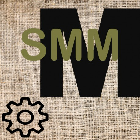 Organize presence on social media (SMM)