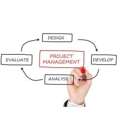 Gestione dei progetti IT